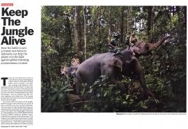 Keep The Jungle Alive